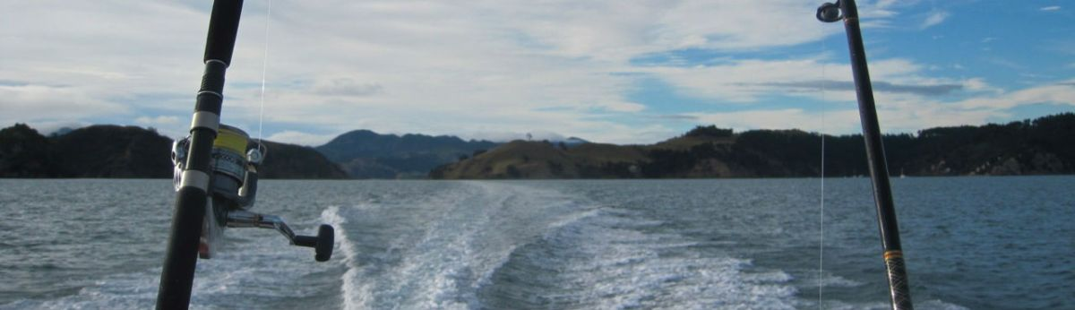 Fishing in Coromandel Harbour