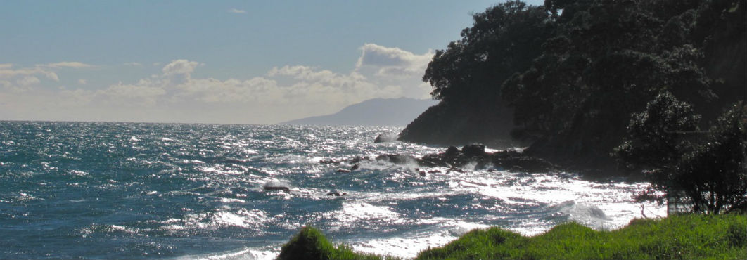 Waves and sea in the Coromandel, New Zealand